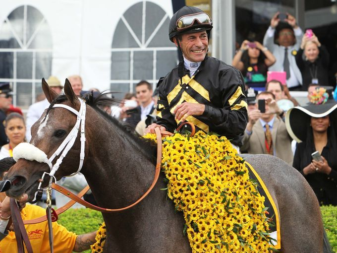 Gary Stevens reacts with Oxbow after winning the 138th running of the Preakness Stakes at Pimlico race course.