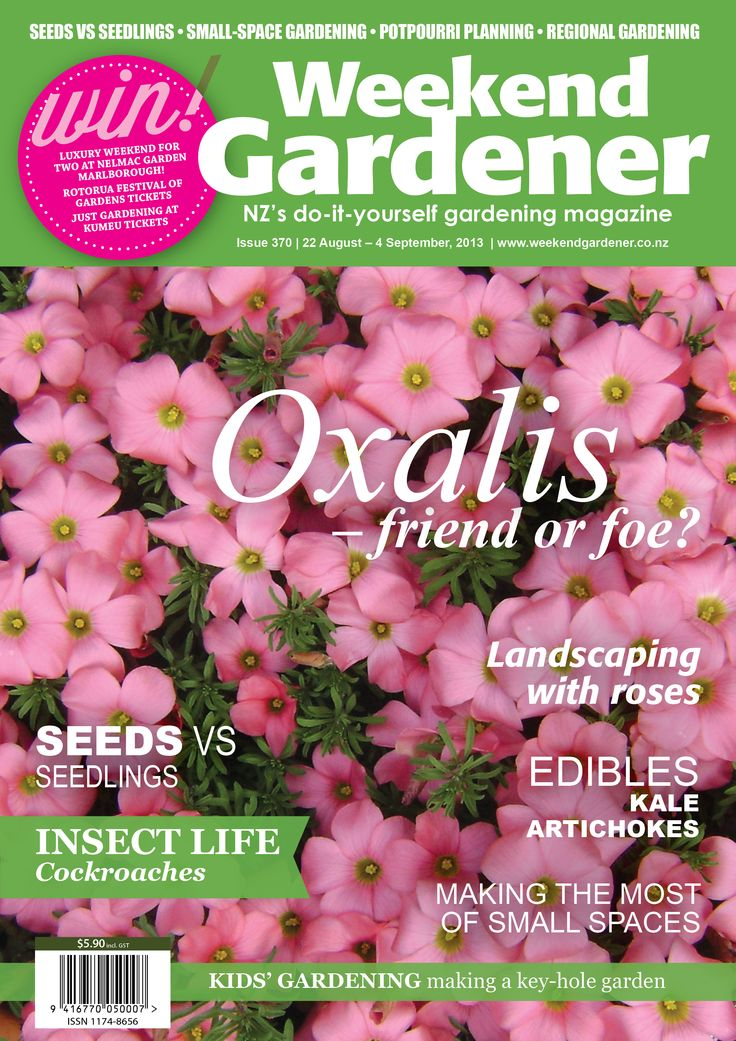 Issue 370 is on sale today! In this edition we debate the Oxalis – is it friend or foe? We have features on landscaping with roses, and in our edibles we look at kale and artichokes. In 'Kids n Dirt' we show little gardeners how to construct a keyhole garden and save water. IN SHOPS NOW!