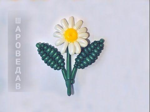 Ромашка из шаров s260 Твистинг / Daisy of balloons Twisting - YouTube