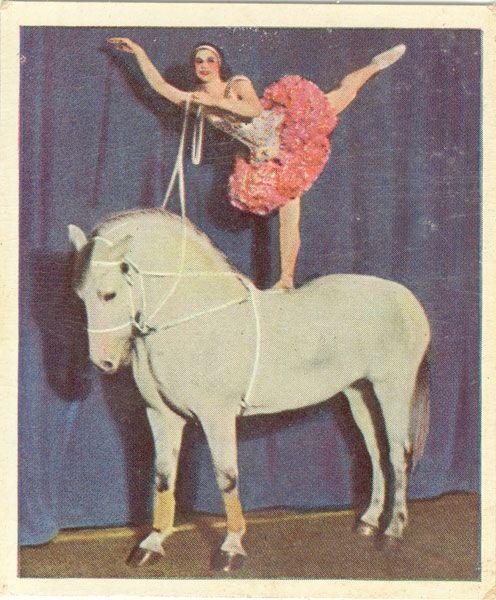 Marika Rökk, a ballerina gone rökk'n'roll.