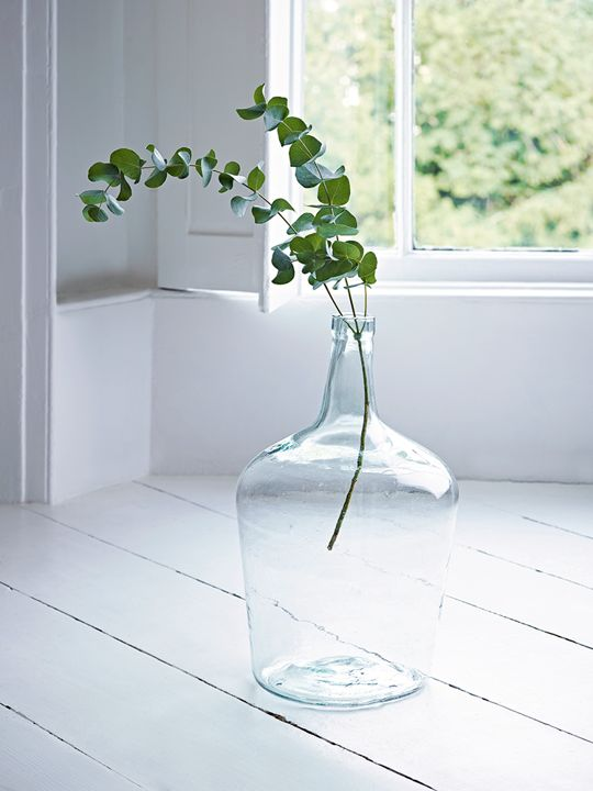 Best 25 Large Vases Ideas On Pinterest Pier 1 Living