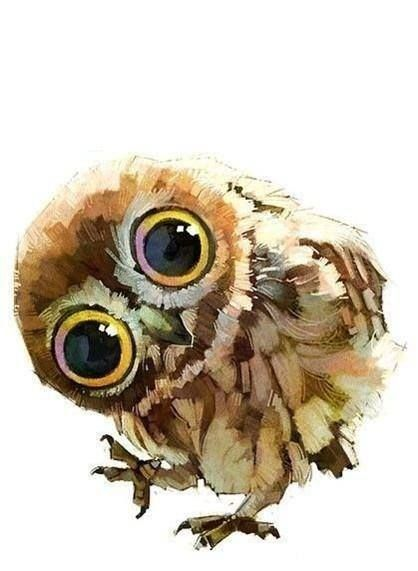 owl painting use acrylic--SO CUTE! cool brush use too.
