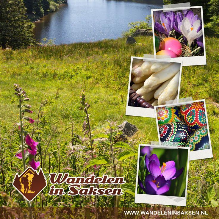 Ostern in der Region Erzgebirge verbringen, http://wandeleninsaksen.nl/home-de/  Ostern in Sachsen ist vielseitig. Schmücken Sie Ihr Heim mit anspruchsvoller Volkskunst Osterdekoration aus dem Erzgebirge. Wie der Frühling präsentieren sich unsere grossen und kleinen Osterhäschen. Gerade bei schönem Wetter kann man einiges unternehmen und erkunden. Ein Osterausflug in die Natur ist im Freistaat überall möglich.
