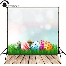 Allenjoy photography backdrops Easter Egg Easter Egg lawn kids photo backdrops for sale professional fabric computer printing(China (Mainland))
