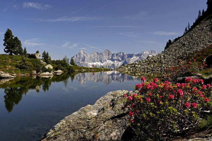 Wanderhotels - best alpine - In den Wanderhotels genießt man einzigartige Berg- und Naturerlebnisse in den schönsten Gebieten der Alpen. So vielfältig die Landschaften, so individuell sind auch die familiengeführten Häuser. Almrausch am Spiegelsee, Dachstein, Steiermark © Wanderhotels/Raffalt