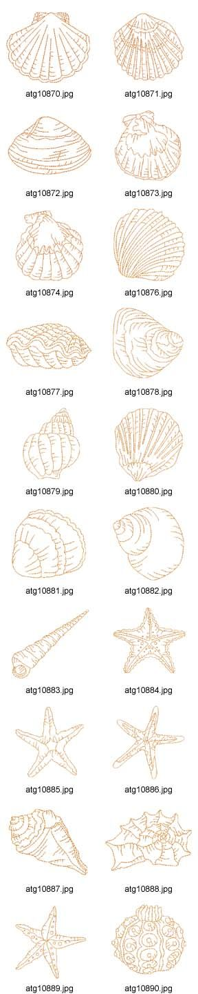 Scattered on the back? With a sea fan background. seashell embroidery designs - Google Search