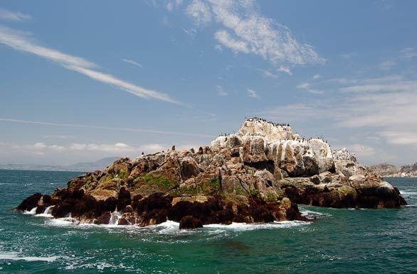 Isla de los lobos, Coquimbo, Chile - http://bit.ly/6sJBEJ