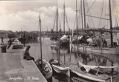 Senigallia:il porto. Regione Marche.(da :Picclick.com)