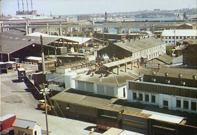 City Markets adjacent to Goods Line 1978, Darling Harbour and Pyrmont Power Station behind: Helen