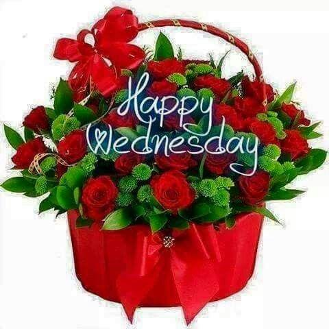 Happy Wednesday greetings