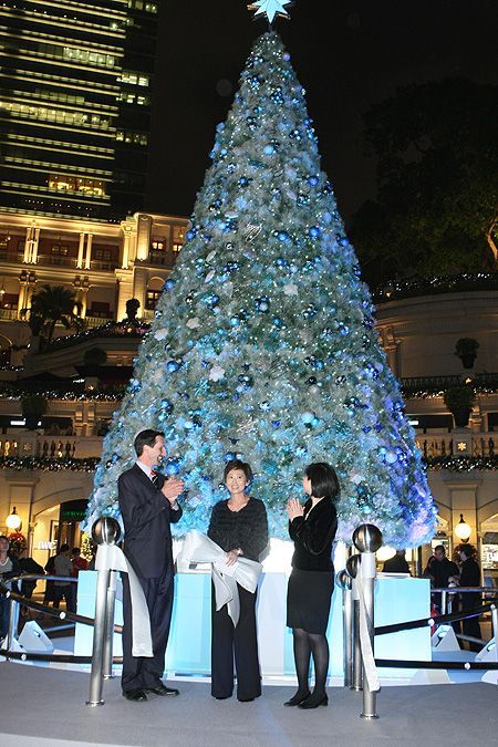 16 best Tiffany Christmas Tree images on Pinterest  Blue