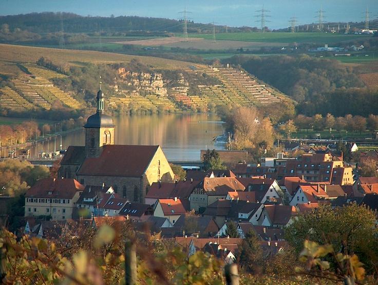 Blick auf Lauffen am Neckar