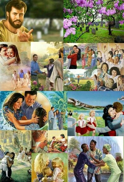 The resurrection              WWW.JW.ORG