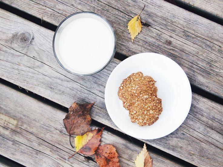 Autumn day, warm quinoa ginger cookies & oatmilk