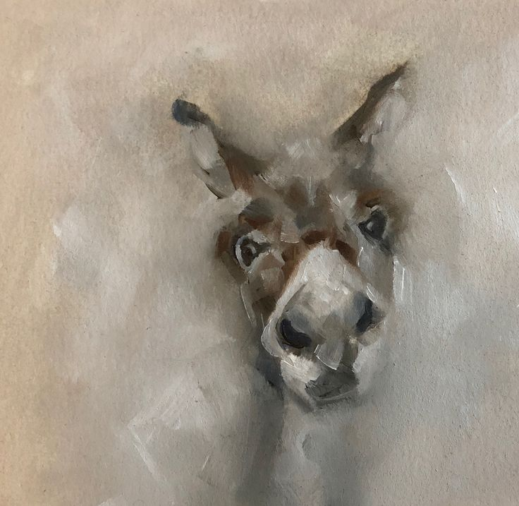 Donkey by Julie Brunn