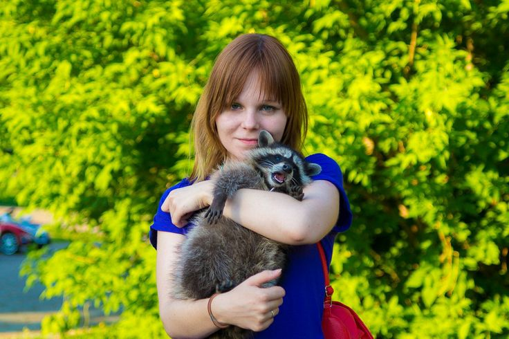 girl and raccoon девушка и енот