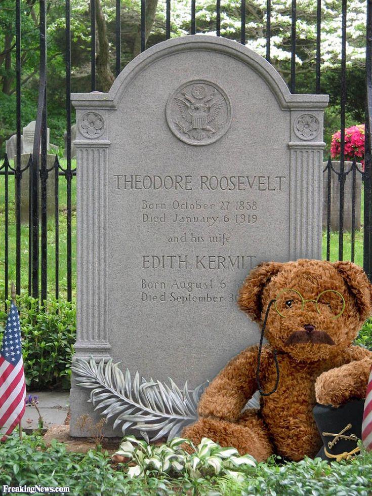 teddy roosevelt progressive essay