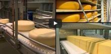 Filmpje Melk en haar producten | Plattelandsklassen - Altijd iets te beleven