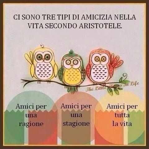 Según Aristóteles hay tres tipos de amistad por: una razón, un momento y toda la vida. Dilo ENIDIOMAS  FaceInstaTwitterPinte✌️ #cursosdeidiomasenccs #cursosdeidiomasenelmundo #nuevoAÑOnuevasMETAS #traduccion #interpretacion #ApprendsLeFrancais #LearnEnglish #LerneDeutsch #Aprendeportugues  #Imparal'Italiano