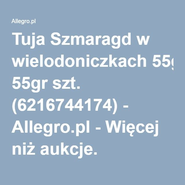 Tuja Szmaragd w wielodoniczkach 55gr szt. (6216744174) - Allegro.pl - Więcej niż aukcje.