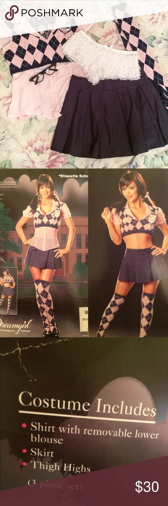 Dreamgirl School Girl Costume with Extras! Everything in picture included! The entire costume, glasses and panties! All size small and in excellent used condition! Top can be worn with or without bottom half of shirt. Dreamgirls Other