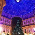 La #moda sotto l'albero di #Natale, ecco gli abeti vestiti dagli #stilisti http://www.firenzepuntog.com/la-moda-sotto-lalbero-di-natale-ecco-gli-abeti-vestiti-dagli-stilisti/  #moda #xmastree #xmas #swaroski