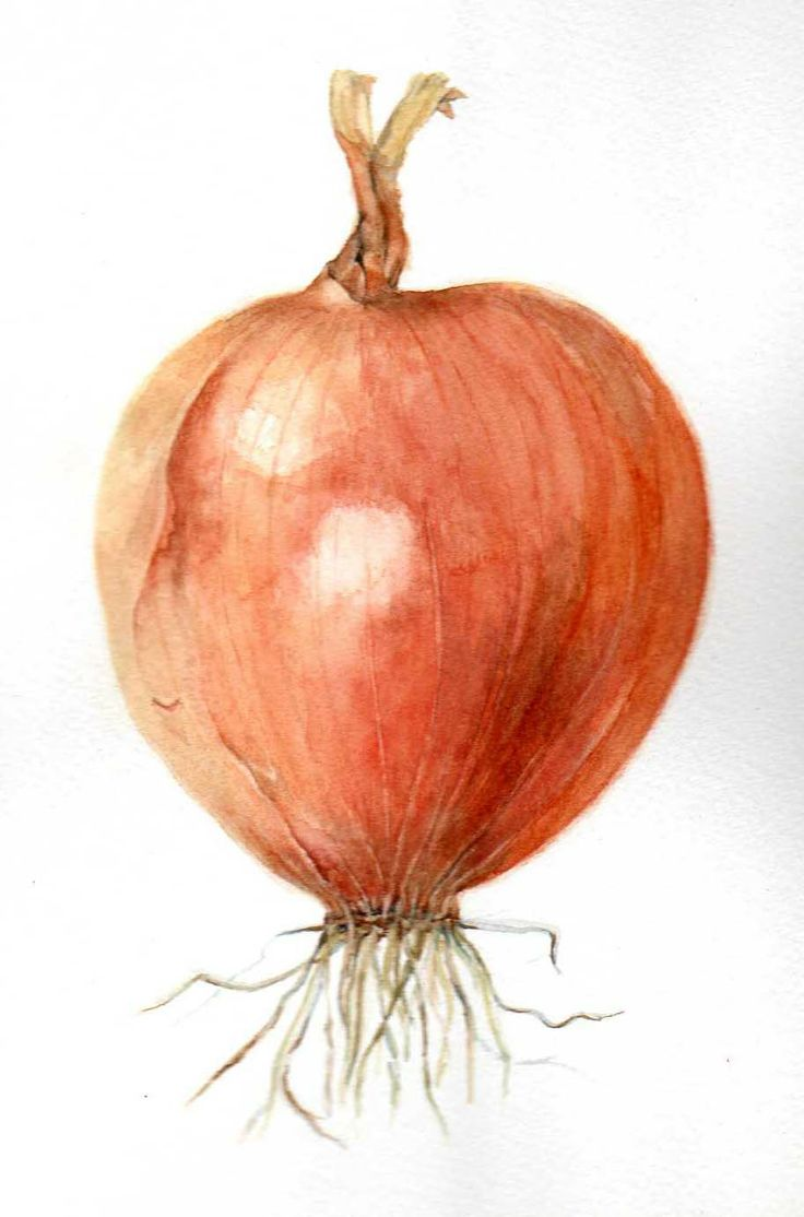 OK, it's only an onion....but it's my onion! Amazing