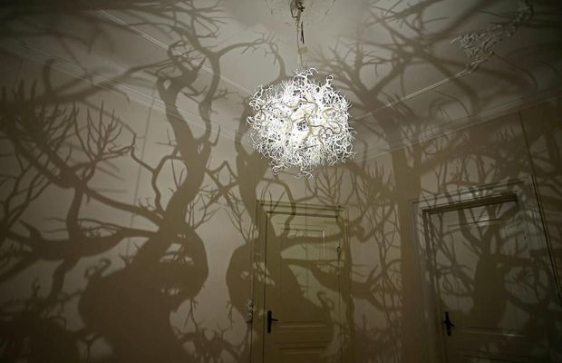 Forms in Nature The Light sculpture Forms in Nature resembles Darwinist Ernst…