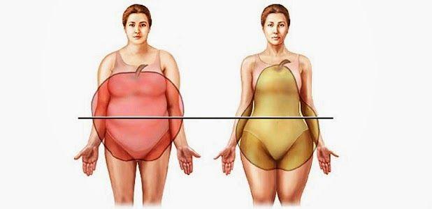 La obesidad | Medicusmeo