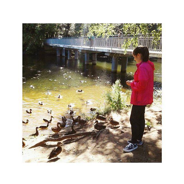 【kkaangje】さんのInstagramをピンしています。 《Summer, I will miss you☀ #summer#nature#russia#moscow#park#forest#river#серебряныйбор#природа#россия#москва#утки#речка#лес#парк#모스크바#러시아#자연#숲#モスクワ#ロシア#自然#朴森林#莫斯科#俄罗斯#自然#公园#森林》