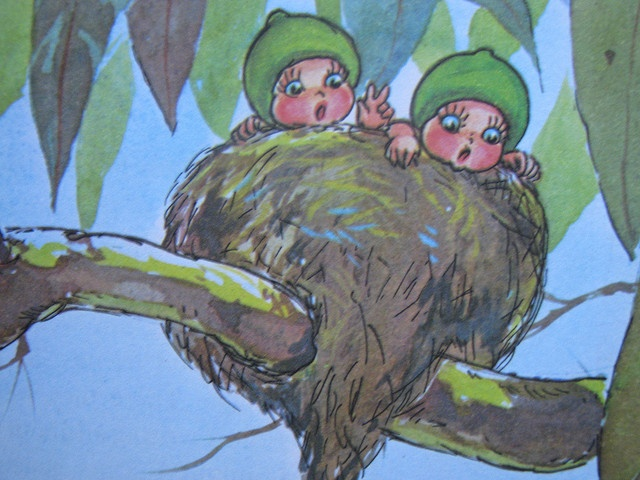 They climbed up into Mrs Fantail's nest - Snugglepot and Cuddlepie
