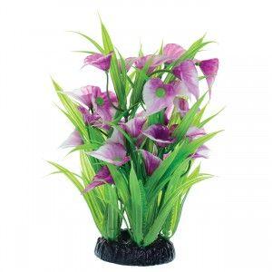 """Purple Calla Lily - 8"""""""