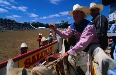 Ride 'Em Cowboy! How to See the California Rodeo in Salinas: Bronco Rider at the Salinas Rodeo