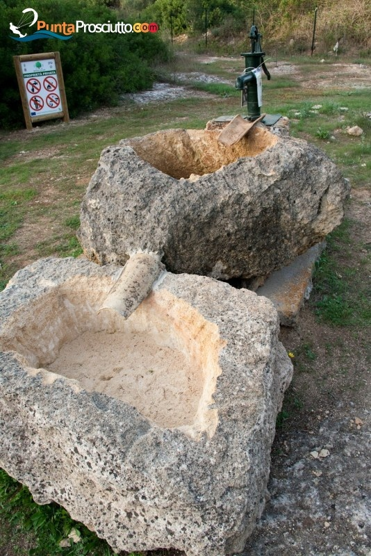 Reserve Forest Cuturi, excursions to explore the archaeological sites, Manduria, Salento, Puglia