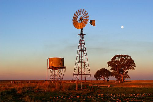 Griffiths Bros. & Co Toowoomba, Queensland, made the first windmills in Australia in 1876. With the trade name 'Southern Cross', they have been the most popular windmill in Australia since 1903. Nerrandera ©Darren Stones www.darrenstones.com.au