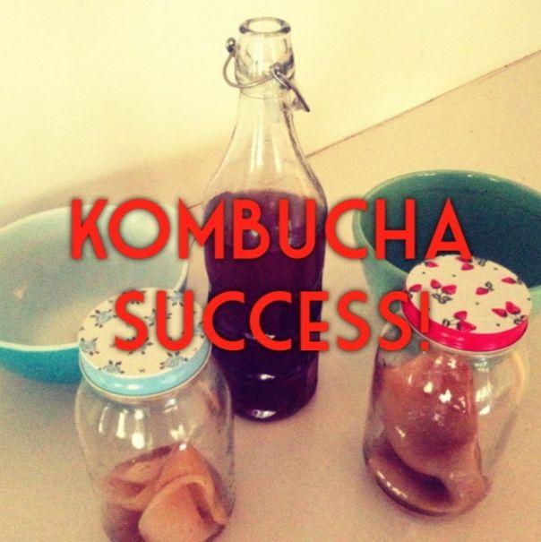 how to make (almost sugar-free) fermented kombucha | Sarah Wilson