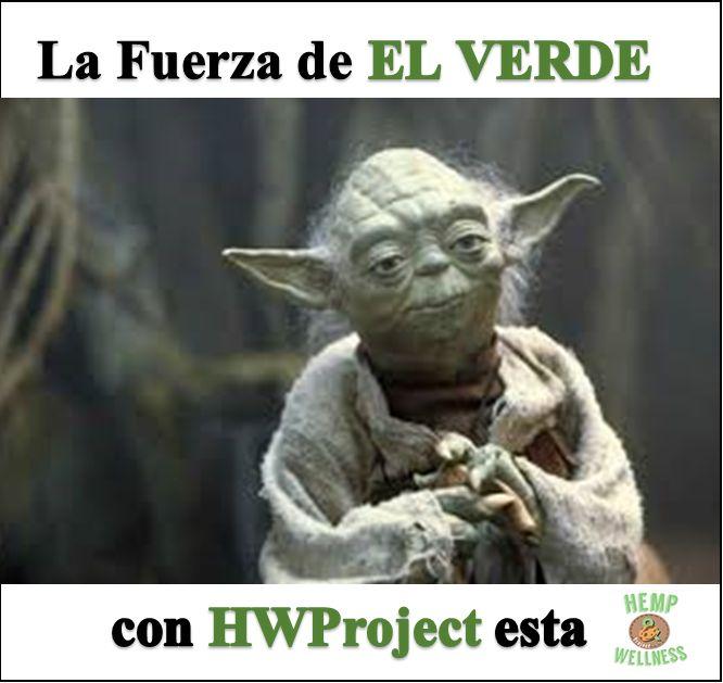 #ForceFriday La #Fuerza de el #verde con @HWProject esta ! #HWProject #Cannabis #Seeds #Yoda #Green