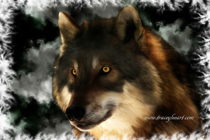 Midnight stare - wolf digital painting. Art blog by Tracey Everington of Niume