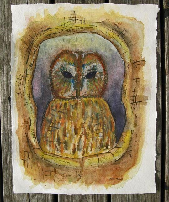 Kirks skattekammer: Denne ugle har skabt ved at blande male og tegneteknikker: akvarel kridt, akvarel, flydende tusch, pensler og rørpen. Papiret er af en lækker spansk håndlavet kvalitet lavet af blandede plante fibre.