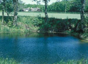 Sødoktoren - oprensning af søer