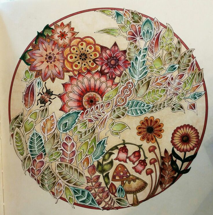 17 Best Images About Coloring Johanna Basford Enchanted