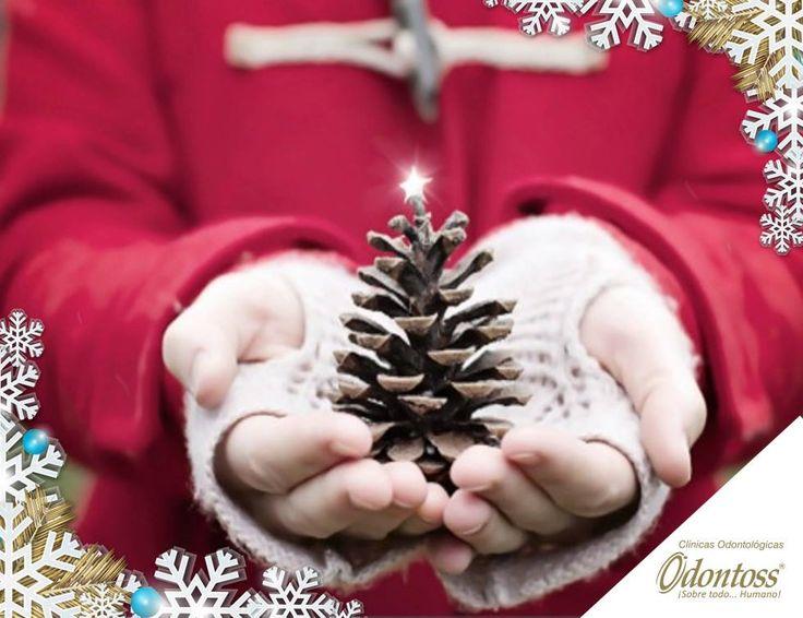 Si no sabes que regalar esta navidad, entonces regala amor y mucha felicidad.