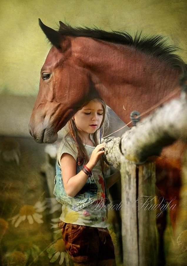 photo of horse with a little girl