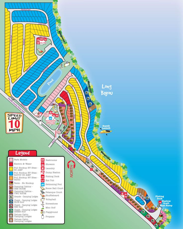 Activities, attractions and events for the St. Petersburg / Madeira Beach KOA RV Park in Florida