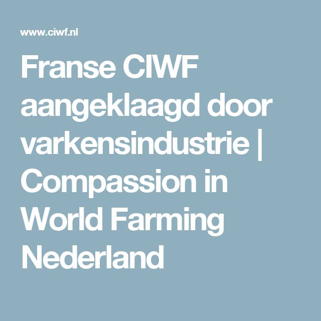 Franse CIWF aangeklaagd door varkensindustrie | Compassion in World Farming Nederland