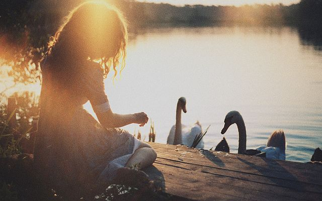 fairy tale about golden hair girl whose brothers were transformed into swans by an evil queen. now this poor girl will have to make shirts of nettles to save them. by laura makabresku, via Flickr
