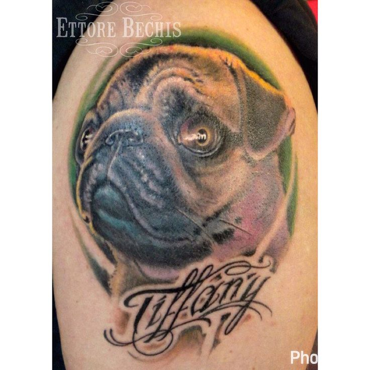www.ettore-bechis.com #pug #dog #tattoo  done with tubes and needles by @kingpintattoosupply #tattoomachine by @hatchback_irons #pugdog  #dogtattoo #portrait #ink #inked #inkedup #miami best tattoo shop in #miamibeach #tattooartist #tattedup #tattooart