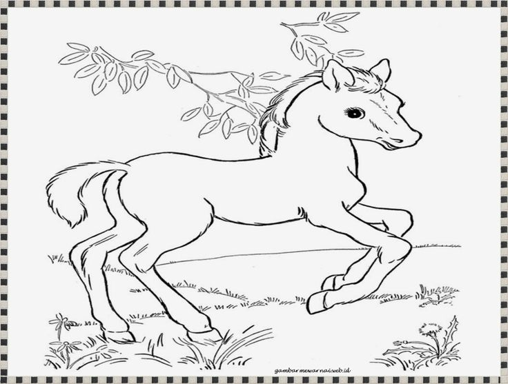 gambar kuda untuk mewarnai Gambar