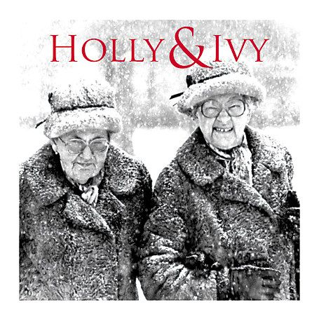 Buy Almanac Holly And Ivy Charity Christmas Cards, Pack of 8 Online at johnlewis.com