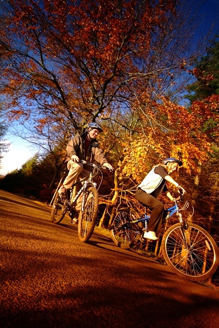 Cycling in Durham - Stunning views at Hamsterley Forest make Durham the ideal destination for a cycling break!